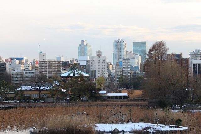 上野動物園 (31)