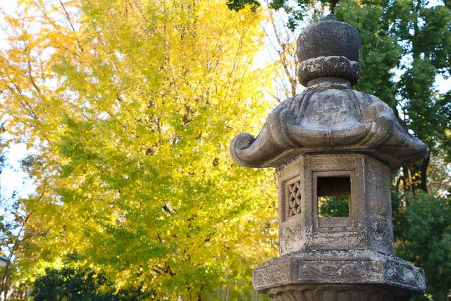 天祖神社 (6)