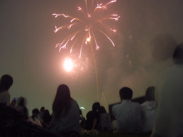 東京競馬場花火大会 (12)