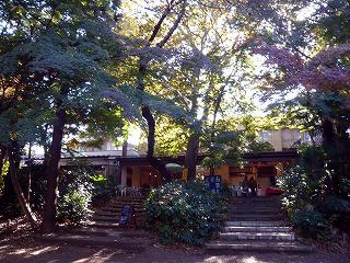 井の頭公園・茶屋