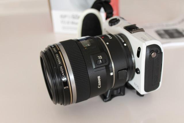 EFS60mm f2 (12)