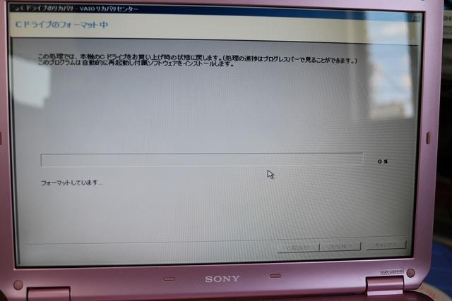ピンクバイオをSSD化 (14)