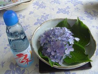 紫陽花とラムネ