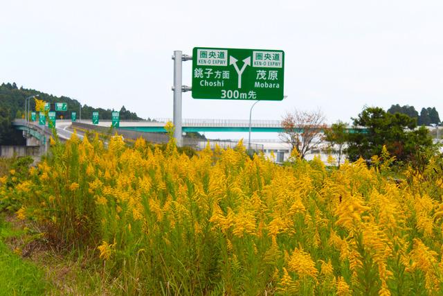 九十九里浜 (2)