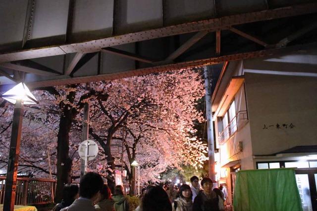 中目黒桜まつり (1)