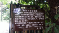 京成・西船駅に向かう途中3