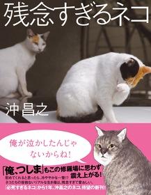 [残念すぎるネコ]