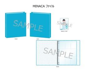 06MINACAファイル