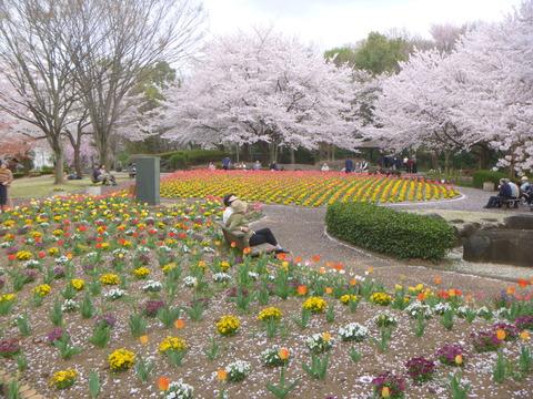 花の丘公園