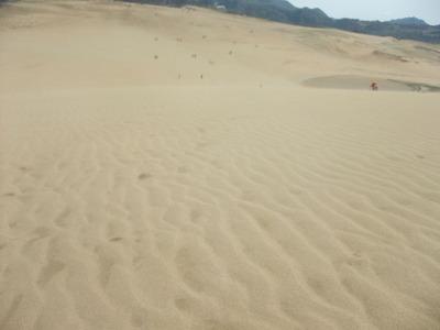 砂丘_02