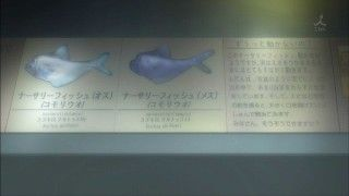 oregairu2-13-2 (23)