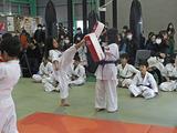 秋季少年部昇級昇段審査会[14]