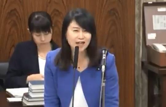 矢田わか子(国民民主)
