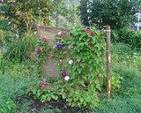 庭のアート