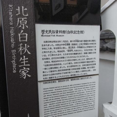 RIMG1266