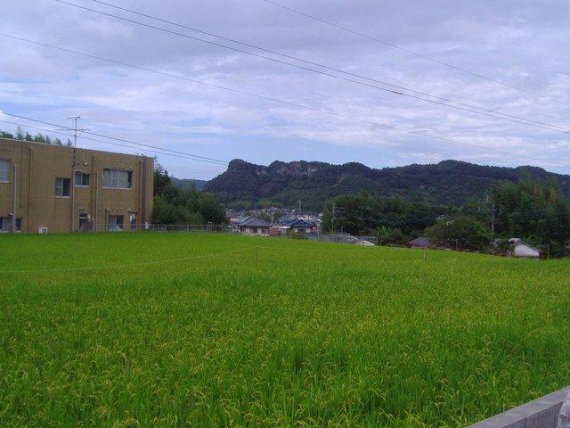 台風接近のため、天気が良くありません・・・