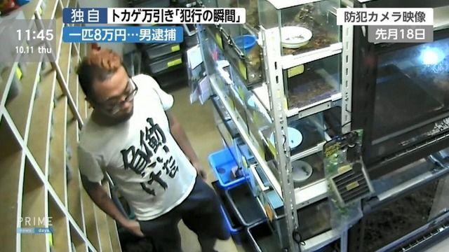 【悲報】働いたら負けTシャツの男、トカゲを万引きして逮捕