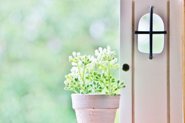 玄関はその家の顔。覚悟を持って通るところ!