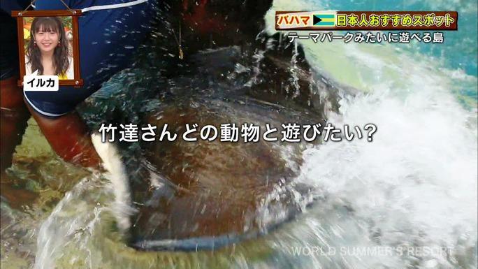 ayana_taketatsu-190303_a15