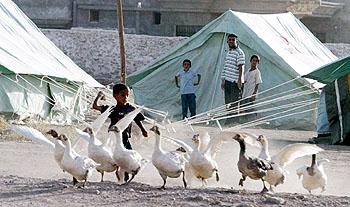 イラク・キャンプ生活