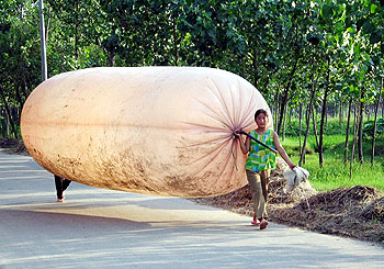 大きなポリ袋
