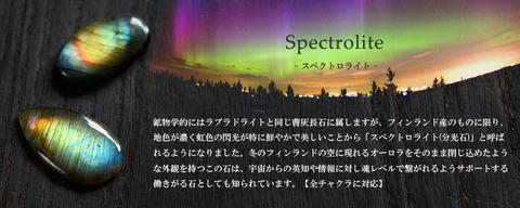 スペクトロライトヘッダー