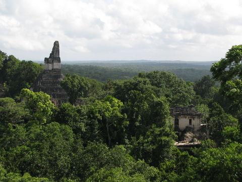 グァテマラ ティカール遺跡