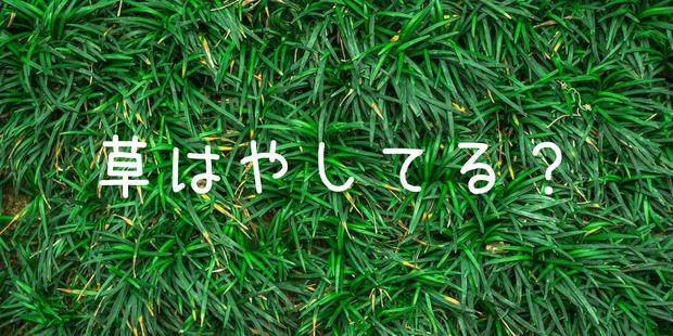 【草はやしてる?】-1-min