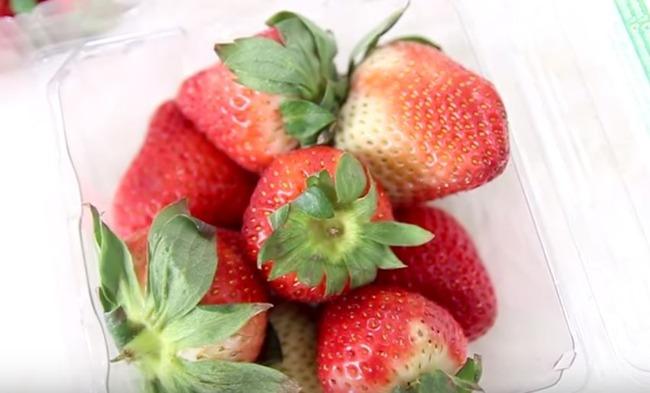イチゴを食べ比べる