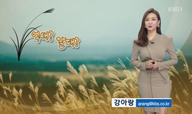 韓国の美人お天気アナウンサー