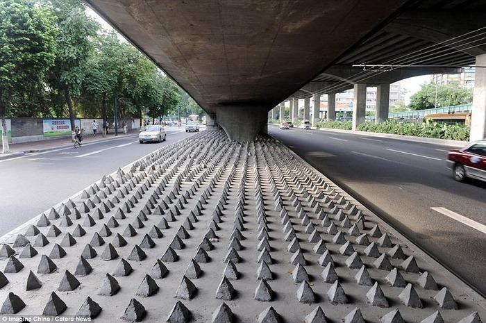 china_homeless_012013031018