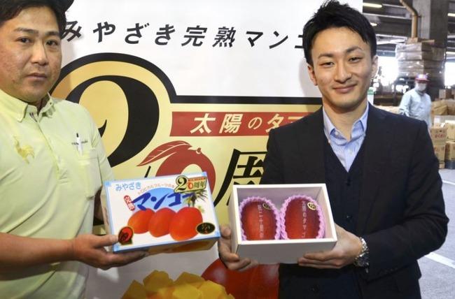 海外「日本人は金持ちだ!日本の世界一高い果物とは?」宮崎産のプレミアムフルーツ「太陽のタマゴ」の値段をご覧ください