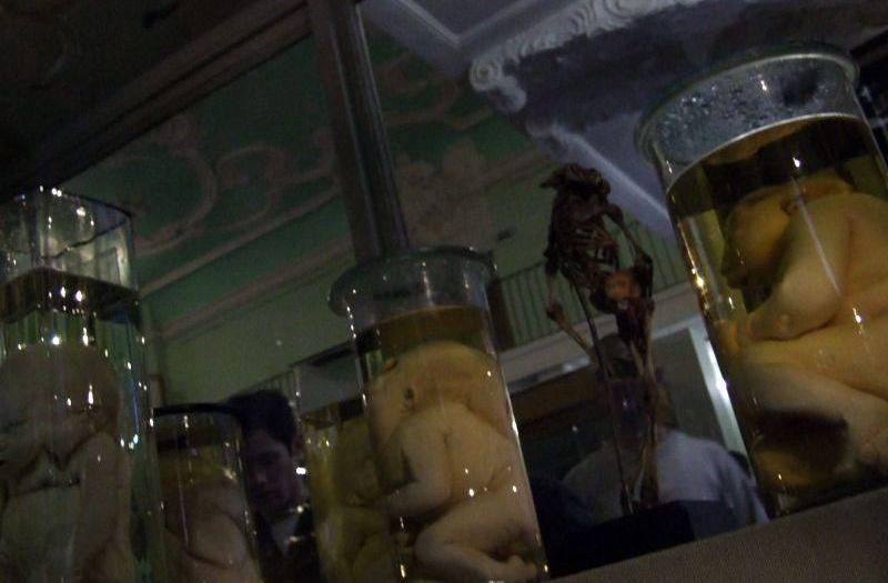 18禁じゃないエロエロアニメ総合スレ246 [転載禁止]©2ch.net YouTube動画>3本 ->画像>1329枚