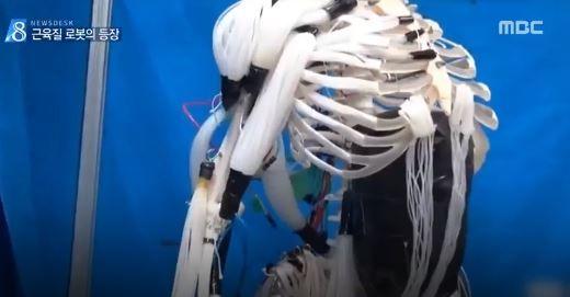 韓国でフィラメントを用いた人口筋肉ロボットを開発