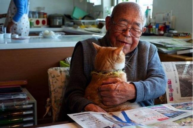 おじいさんに付き添う赤猫
