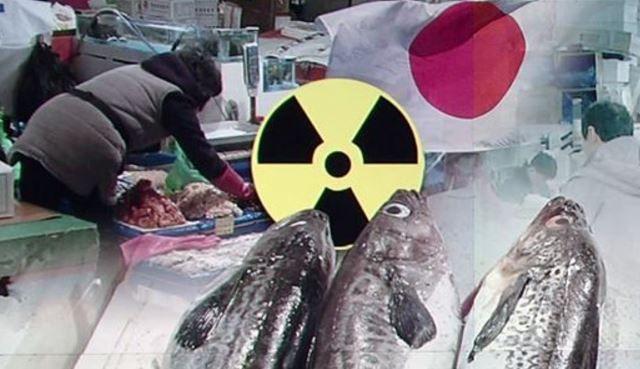 放射能水産物