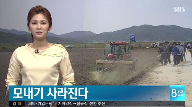 [韓国経済]韓国で種もみを直接水田に撒く「水田直まき栽培が拡大」田植えが消える‥ 韓国反応