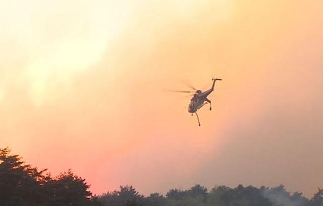 韓国で大型山火事