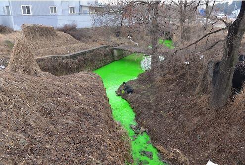 韓国の川が汚染される