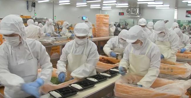 韓国のコンビニ弁当工場