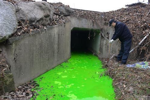 韓国の川に汚染物質が流出し緑色に
