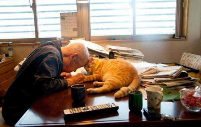 おじいさんと赤猫