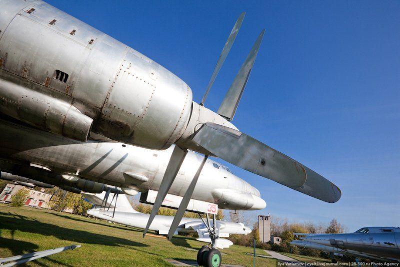 Tu 95 (航空機)の画像 p1_17