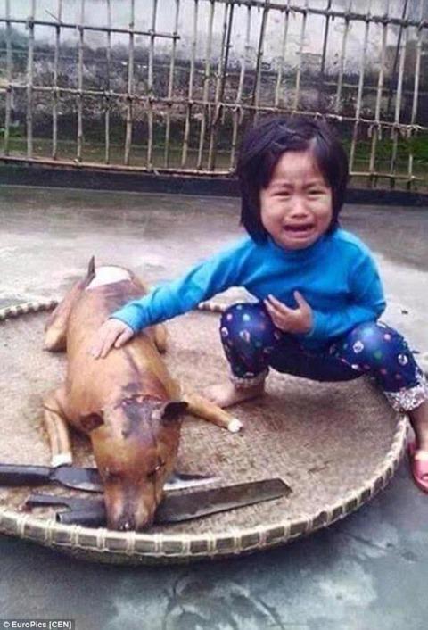 vietnam-girl-dog-meat-2-2015-3-31