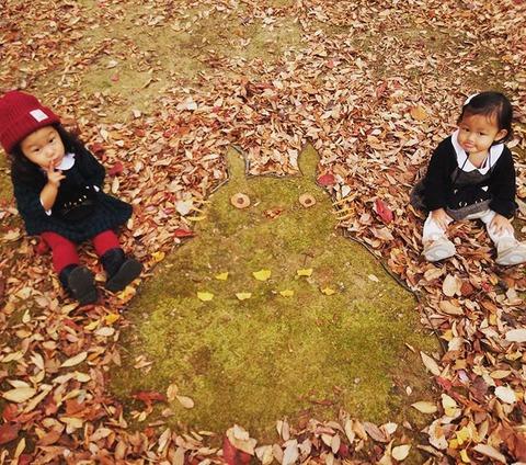 fallen-leaf-art-japan-1-585117bf9053d__700