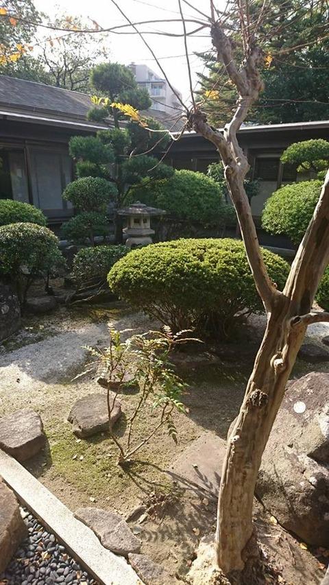 yosimoto4