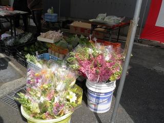 P4140269(特産品:花)