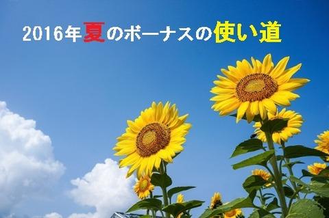 夏のボーナス