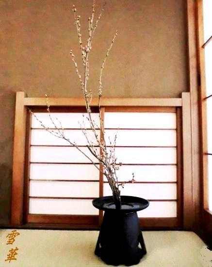 20160316ブログ分桜一色生花杉山先生宅20160305縮小版