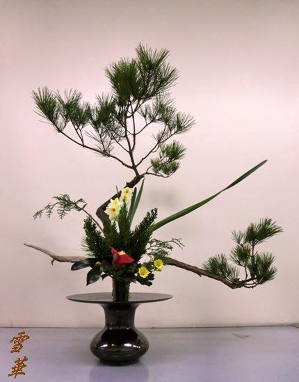 古典立花教室3年生冬胴束縮小版